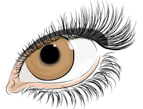 Eyelash Extensions – How will they look?