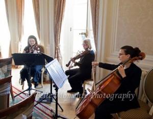 Ariella String Quartet, Trio & Duo