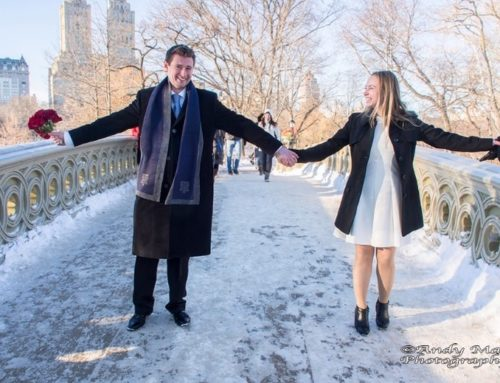 Winter weddings in central park wedding day angel for How to start planning a destination wedding