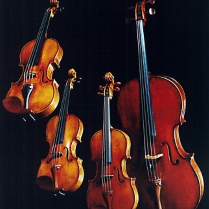Romanza String Quartet